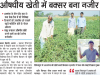 News from Dainik Jagran - Buxur Bihar
